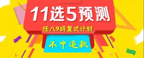 11选5专家预测任选八9码复试