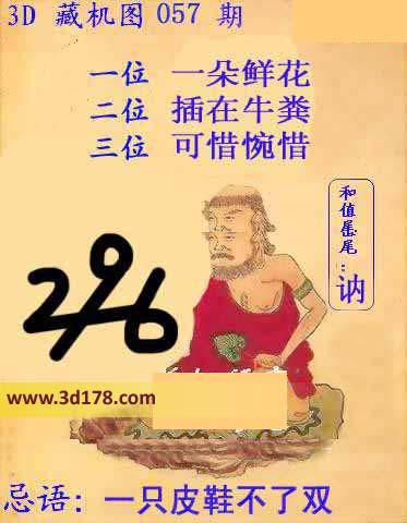 福彩3d第2014057期藏机图详解:-3d第2014057期藏机图 一只皮鞋不
