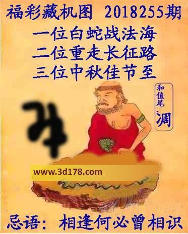 3d第2018255期正版藏机图推荐忌语:相逢何必曾相识