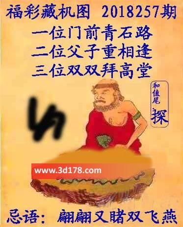 第2018257期3d正版藏机图忌语:翩翩又睹双飞燕