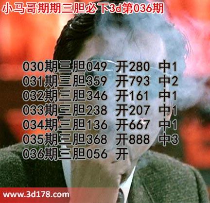 小马哥3d第19036期预测分析推荐:三胆056