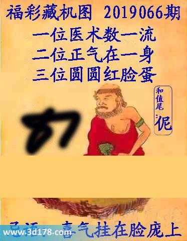 第2019066期3d正版藏机图三位:圆圆红脸蛋