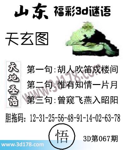 3d第2019067期丹东天玄第二句:惟有知情一片月
