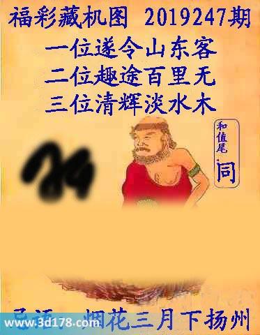 第2019247期3d正版藏机图:三位清辉淡水木