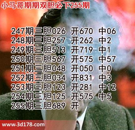 小马哥3d第19255期预测分析推荐:三胆689