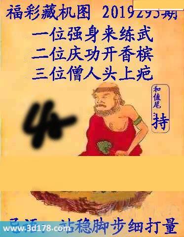 3d第2019295期正版藏机图忌语:站稳脚步细打量